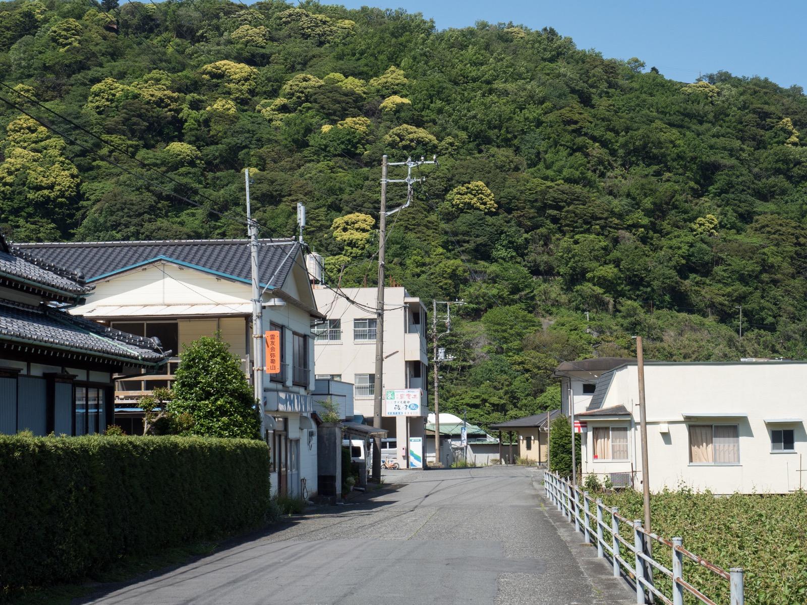 伊豆大川駅周辺