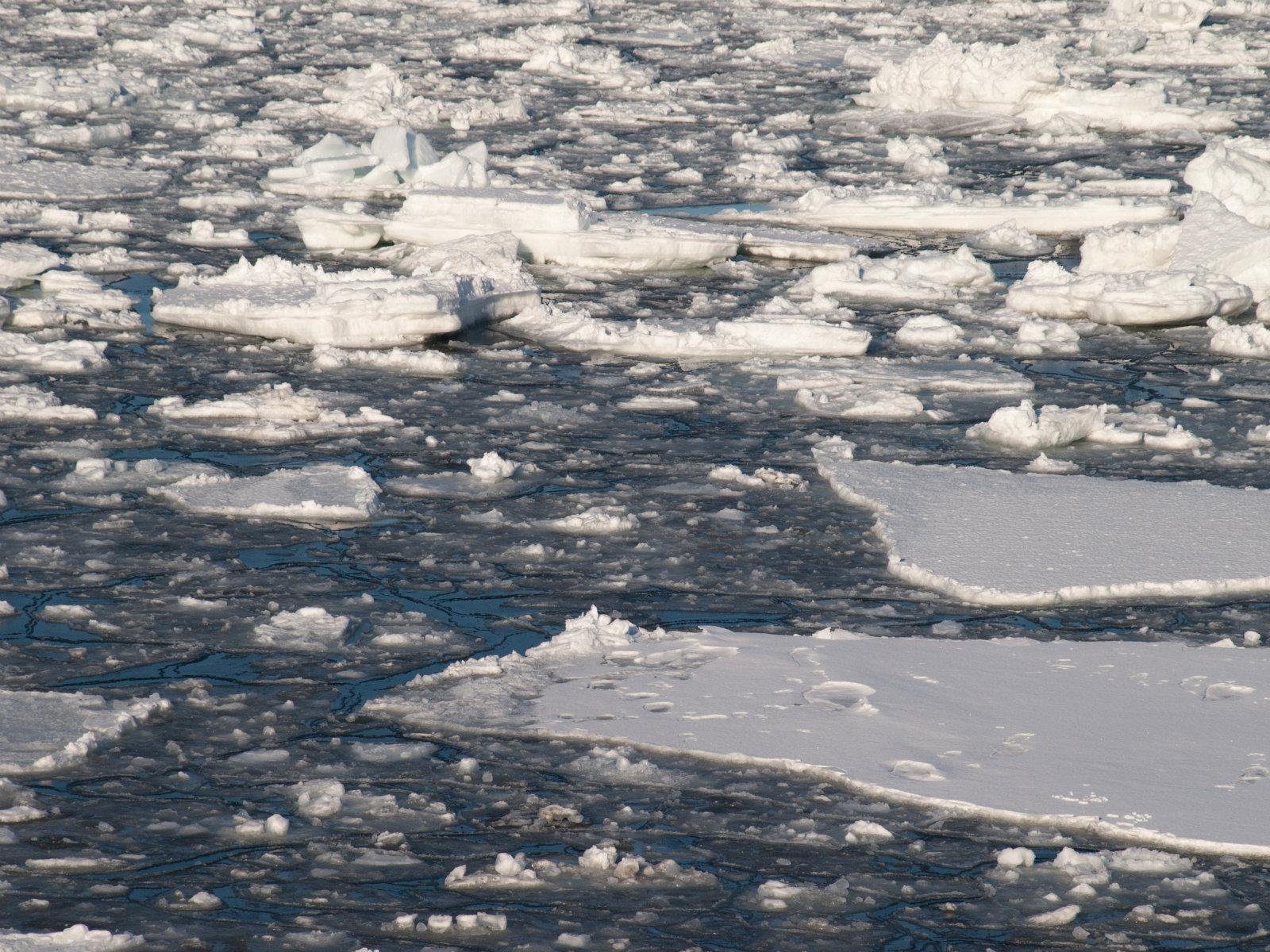 北浜駅から見た流氷