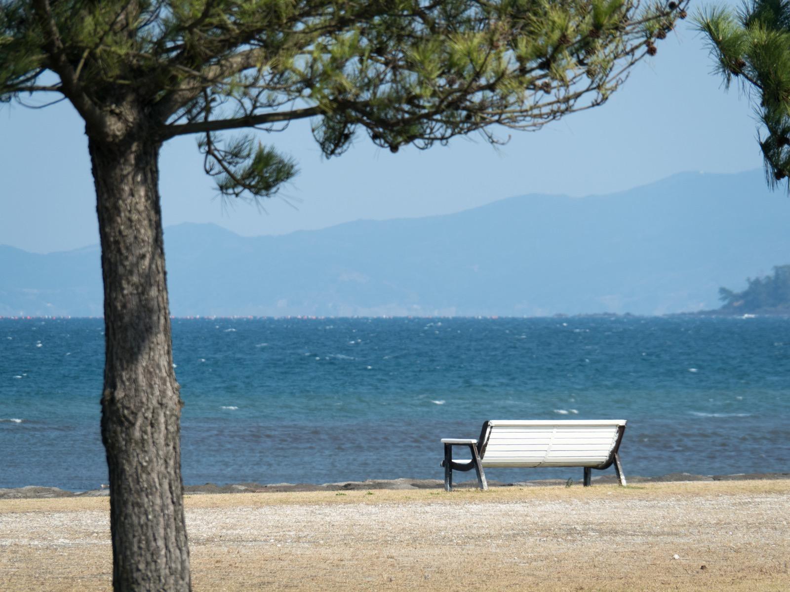 宮ケ浜海岸の公園