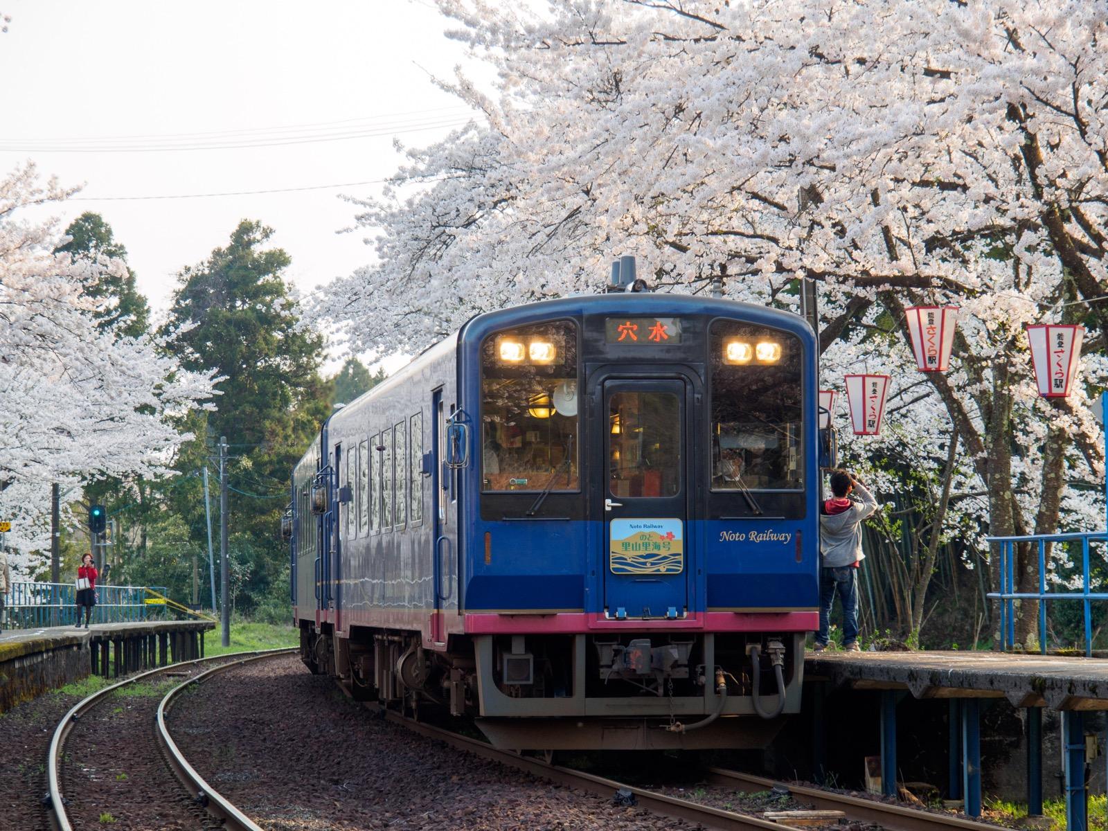 桜が満開の能登鹿島駅(能登さくら駅)に到着する「のと里山里海号」