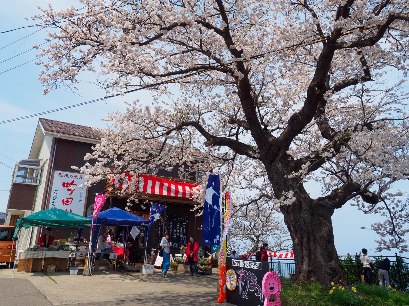 青海川駅そばの「酒の新茶屋」