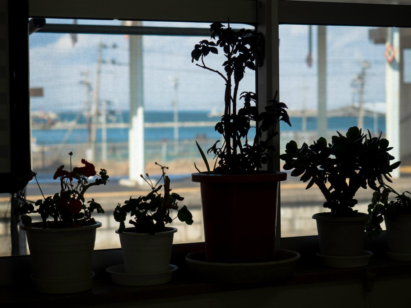 鮫駅の待合室から見た八戸港