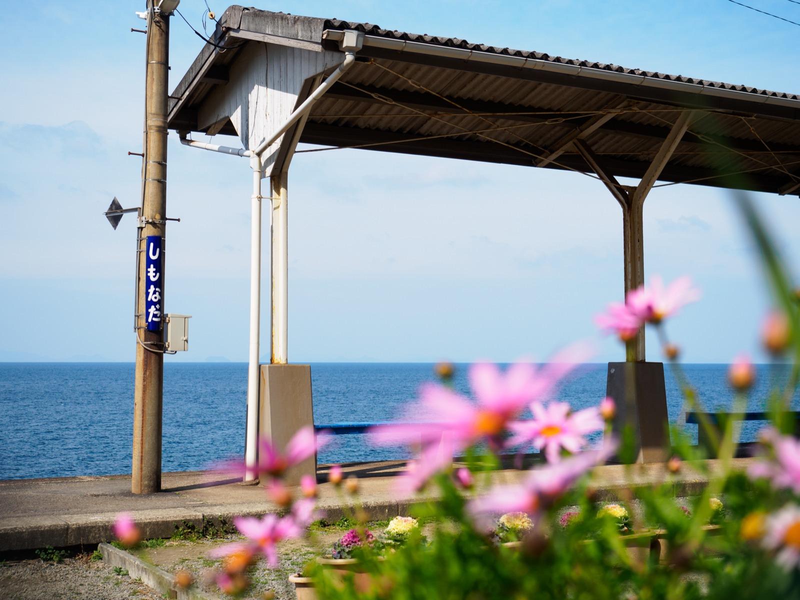 下灘駅のホームと花
