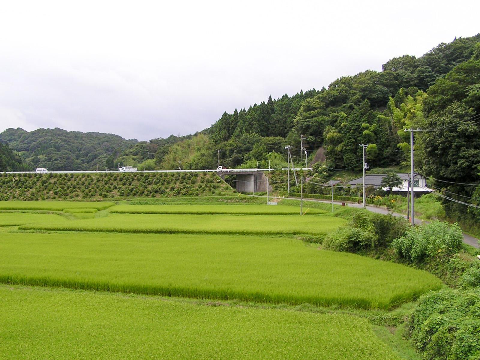 末続駅のホームから見る山側の風景(2006年8月)