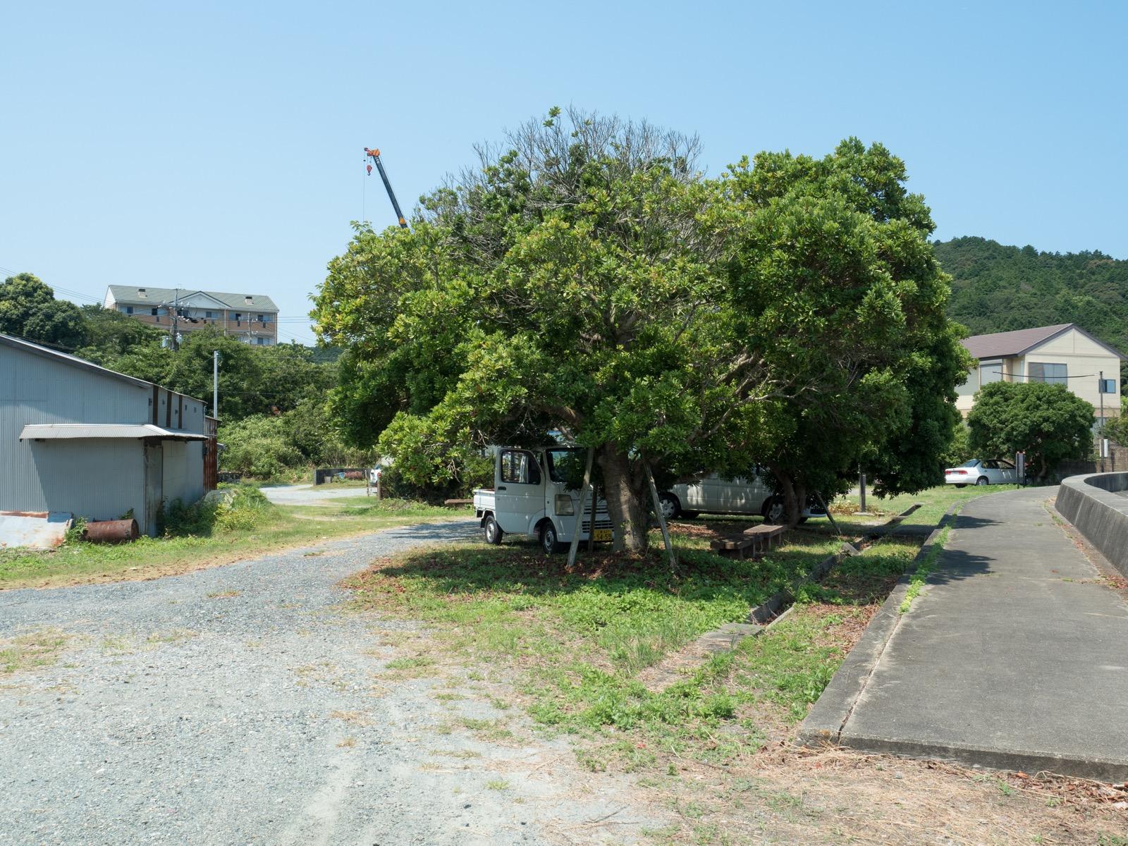 池の浦シーサイド駅前