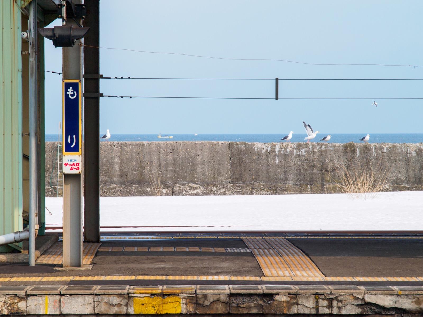 森駅のホームから見た噴火湾(内浦湾)とウミネコ