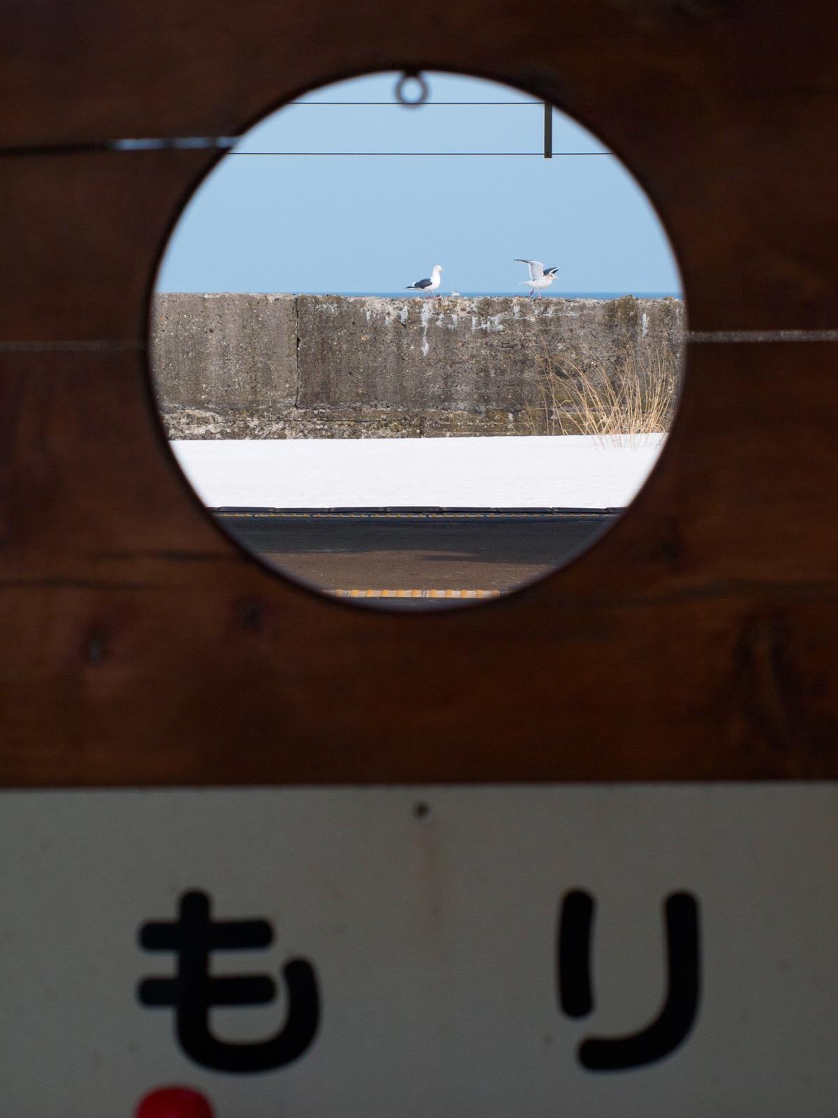 森駅のホームにある顔出し看板から見たウミネコ