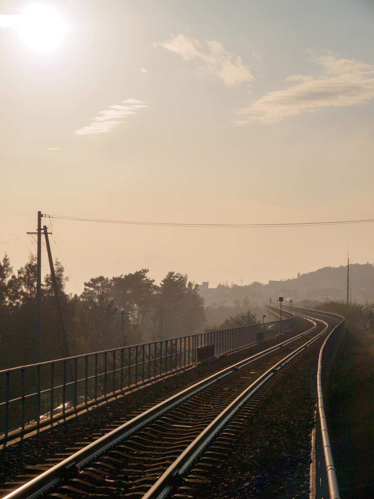 西分駅から見える琴ヶ浜の松原