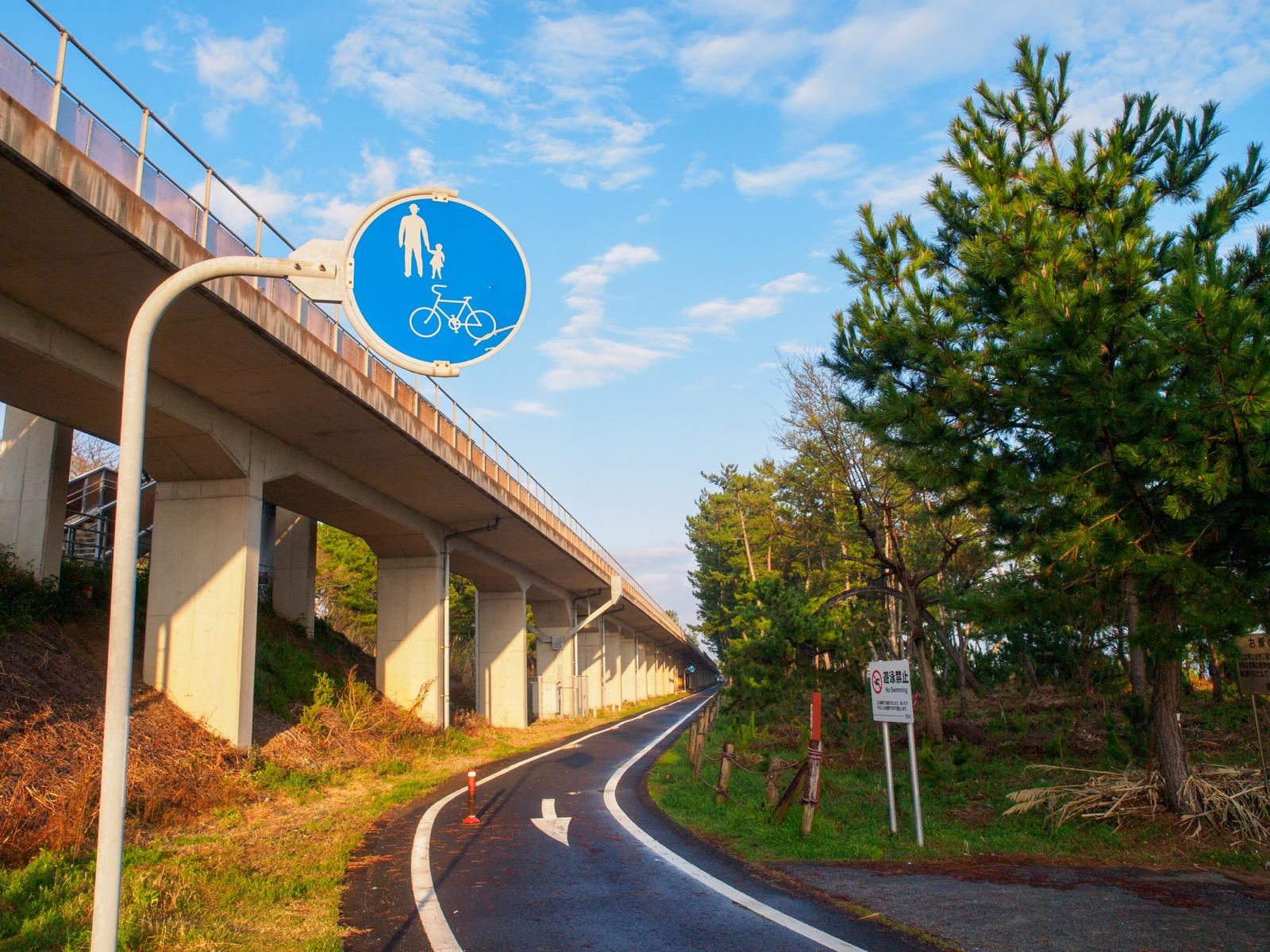 西分駅の下にある琴ヶ浜の松原とサイクリングロード