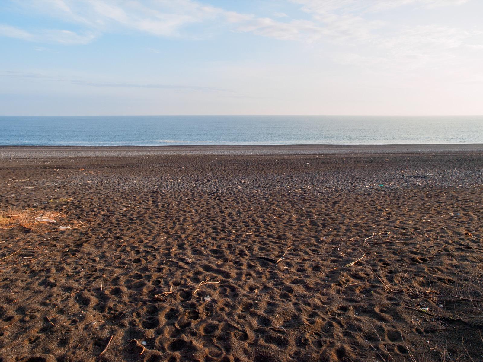 琴ヶ浜と土佐湾